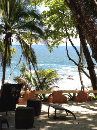 Ylang Ylang Beach Resort: my front view from my room