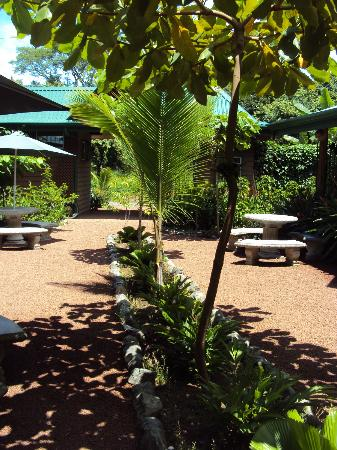 Paspartu CR Beach Hotel: Picnic tables in the courtyard make for a comfortable common area