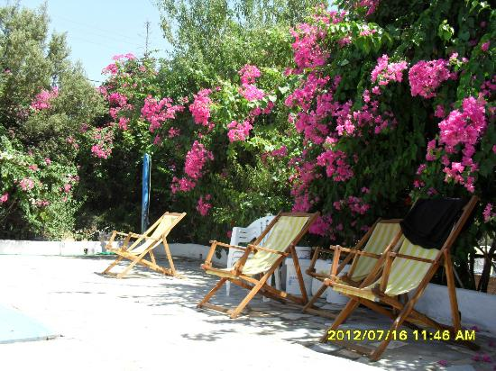 Hotel Irini Tilos