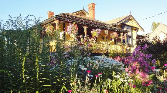 Albion Manor Bed and Breakfast: Beautiful Gardens in front of B&B