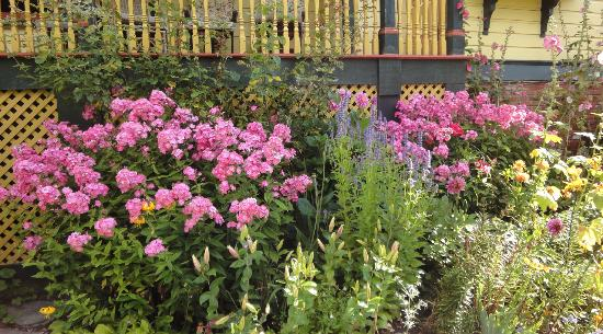 Albion Manor Bed and Breakfast: Beautiful Gardens