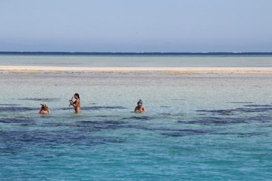 PJ&#39;s Ultimate Sailing &amp; Snorkelling Experience: The Sand Bar