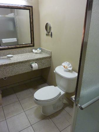 Holiday Inn Hotel & Suites Salt Lake City-Airport West: Bathroom has shower only