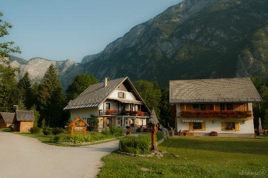 Alpik Apartments at Bohinj Lake