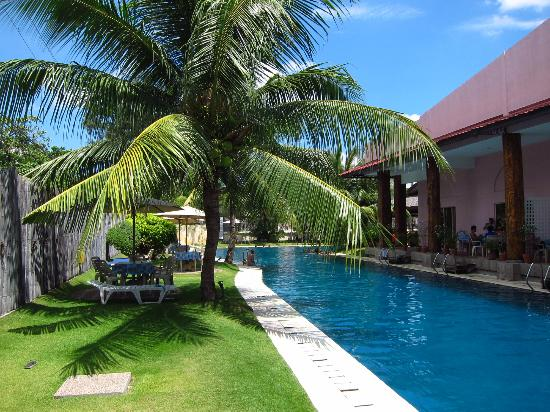 Pool Picture Of Wild Orchid Beach Resort Subic Bay Subic Bay Freeport Zone Tripadvisor