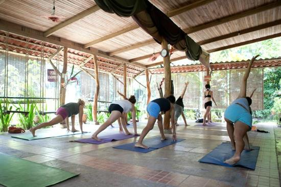 OM - Yoga, Massage, Surf, Tours & Hostel