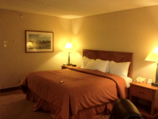 BEST WESTERN PLUS Airport Plaza Hotel: King Bed
