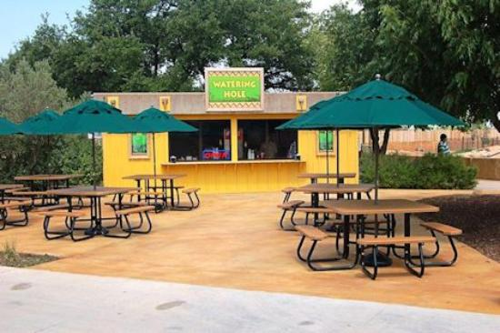 Abilene Zoo http://www.tripadvisor.in/Attraction_Review-g30138-d288037-Reviews-Abilene_Zoo-Abilene_Texas.html
