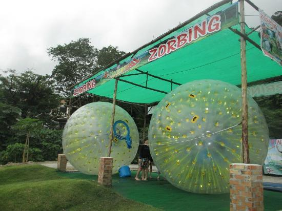 Rollerball Zorbing Phuket; a unique and exciting activity