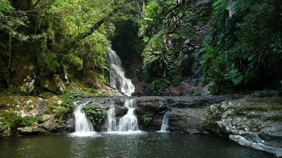 lamington np has beautiful waterfalls and and many walks. Black Bedroom Furniture Sets. Home Design Ideas