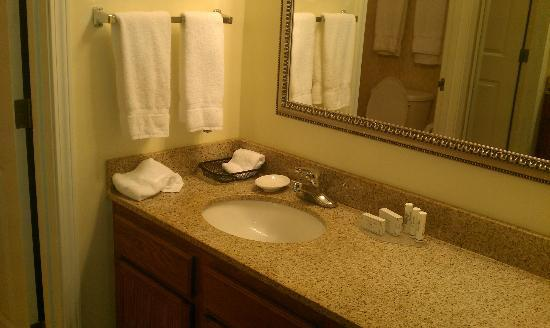 Residence Inn Buffalo Cheektowaga: Bathroom