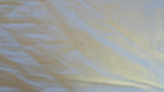 Comfort Inn West: Stain on sheets...I had several more pics but they didn&#39;t show up
