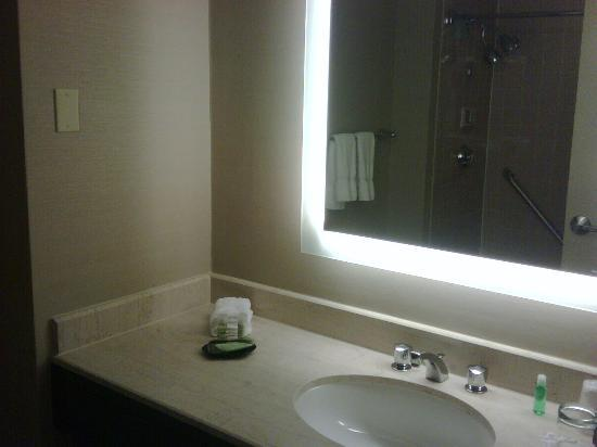 The Westin Waltham-Boston: Bathroom