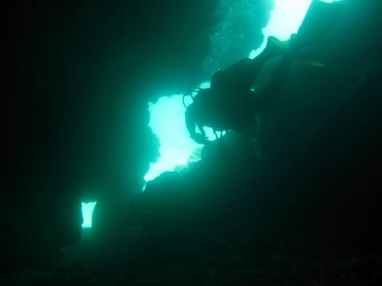 Dolphin Dive: Diving through Caves