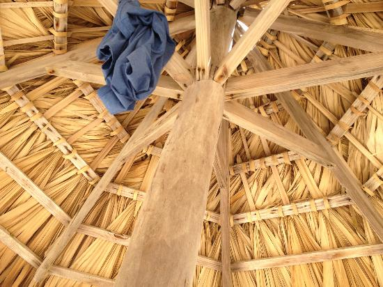 VIK Hotel Cayena Beach: Looking up at the palopa