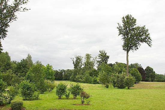 Les Chapelles-Bourbon, Frankrike: Grounds from Rear Terrace