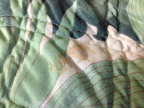 Travelers Inn & Suites: Strange, foul-smelling caked-on stains on bed covers