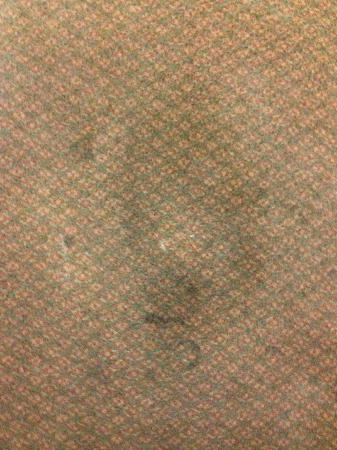 Travelers Inn & Suites: Carpet is stained, dirty and SOAKING WET