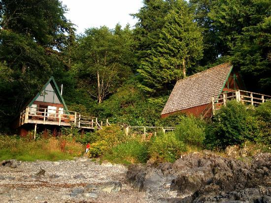 Duffin Cove Resort: Cabins by the water