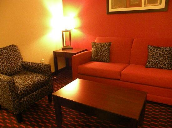 Comfort Suites Florence: Sitting area.