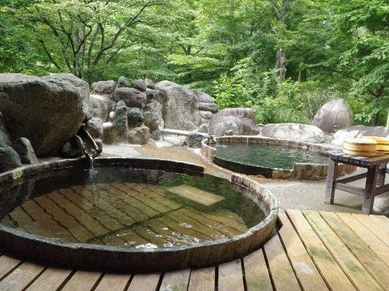 Pension Honomitei: onsen