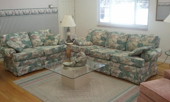 Hontoon Landing Resort &amp; Marina: Living room