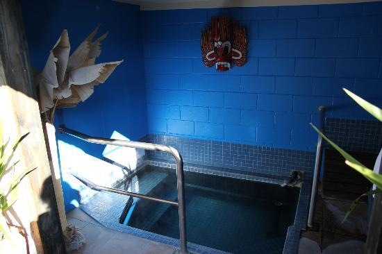 MALFROY motor lodge Rotorua - Accommodation and Mineral Pool: The mineral pool.