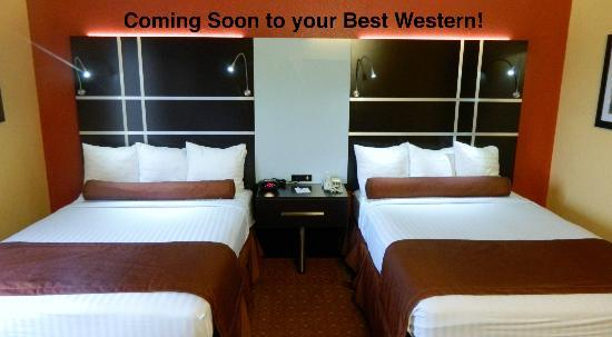 BEST WESTERN PLUS Carlton Suites: New Furniture in the Family Suite