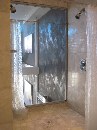 Manhattan Lofts: Double head shower overlooking living area