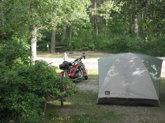 Golden Municipal Campground: Tent site along the river