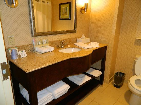 Holiday Inn Express Columbus - Dublin: Very nice bathroom