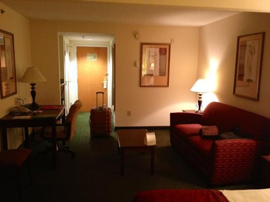 Wingate by Wyndham Atlanta Galleria Center: chambre king