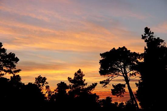 Beautiful sunsets in every part of Cambria, Pines by the Sea