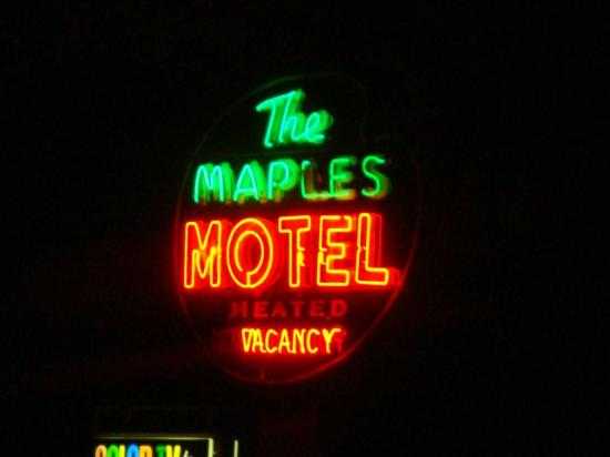 The neon Maples Motel Sign