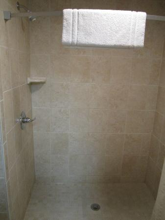 Howard Johnson Traverse City: Shower stall (no tub)