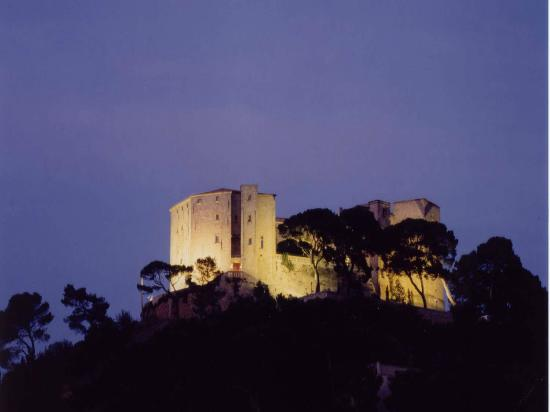 Photo of Chateau de Meyrargues