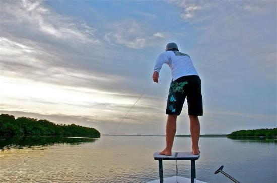 Fly fishing key west picture of saltwater charters key for Key west fly fishing
