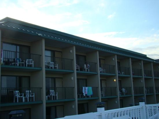Quality Inn Carolina Oceanfront: back of hotel while sitting at the pool. the ocean is blocked by the dunes.