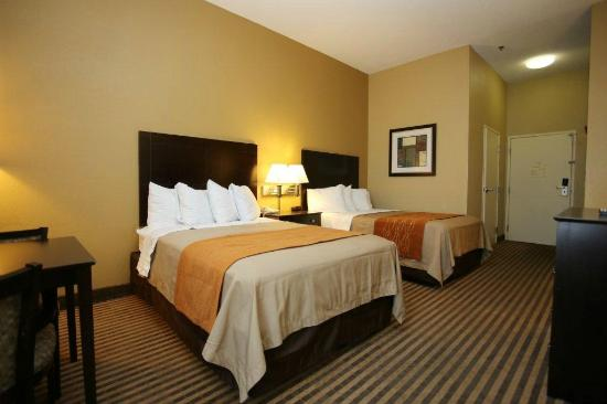Comfort Inn Airport Turfway Road: Double Room