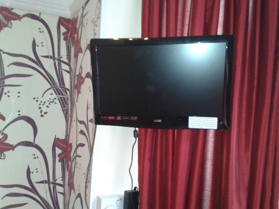 Ersham Lodge Hotel: Rooms have HD Freeview T.v