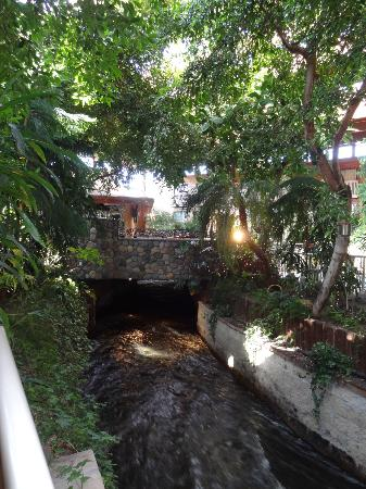 BEST WESTERN PLUS Vernon Lodge & Conference Center: Creek running through hotel with Salmon in it.
