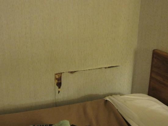 EconoLodge & Conference Center: Hole cut in wall where someone accessed the tub's plumbing.