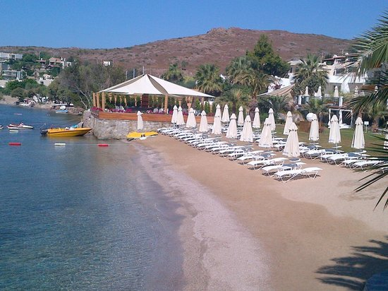 MejorCosta Hotel:                   BEAUTIFUL SAND