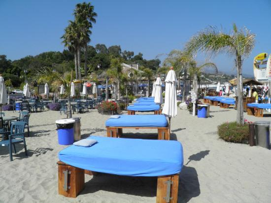 restaurant picture of paradise cove beach cafe malibu tripadvisor