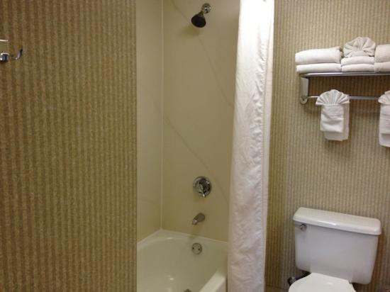The Comfort Inn & Suites Anaheim, Disneyland Resort: shower