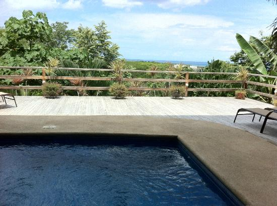 Mirador B&B: Pool deck