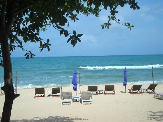 Amigos Guesthouse: The Beach from the Restaurant