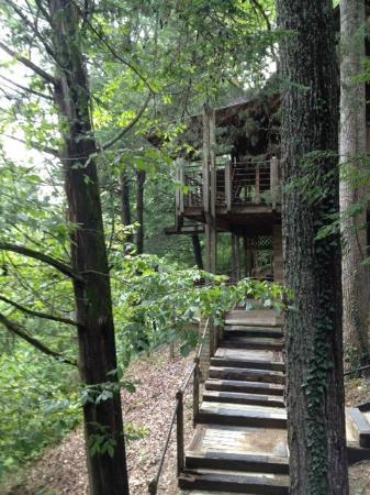 Inn at Evins Mill: Looking off the deck