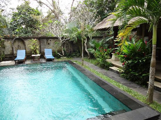 Alas Petulu Cottages: Private pool area
