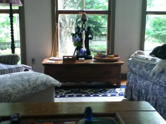 Trumansburg, นิวยอร์ก: Lovely living room area..so rexaling!